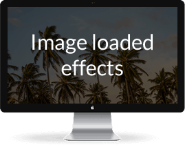 Image loaded effects