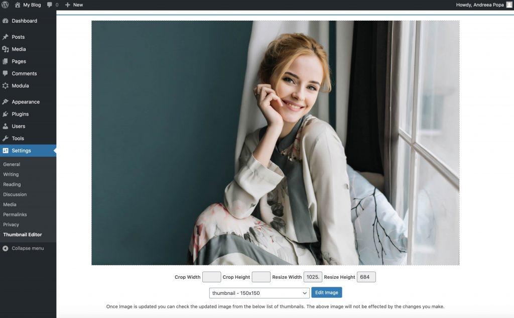 Thumbnail Editor photo editing plugin interface