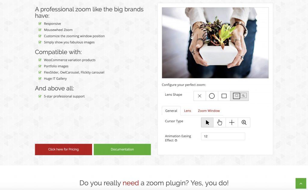 WP Image Zoom photo editing plugin