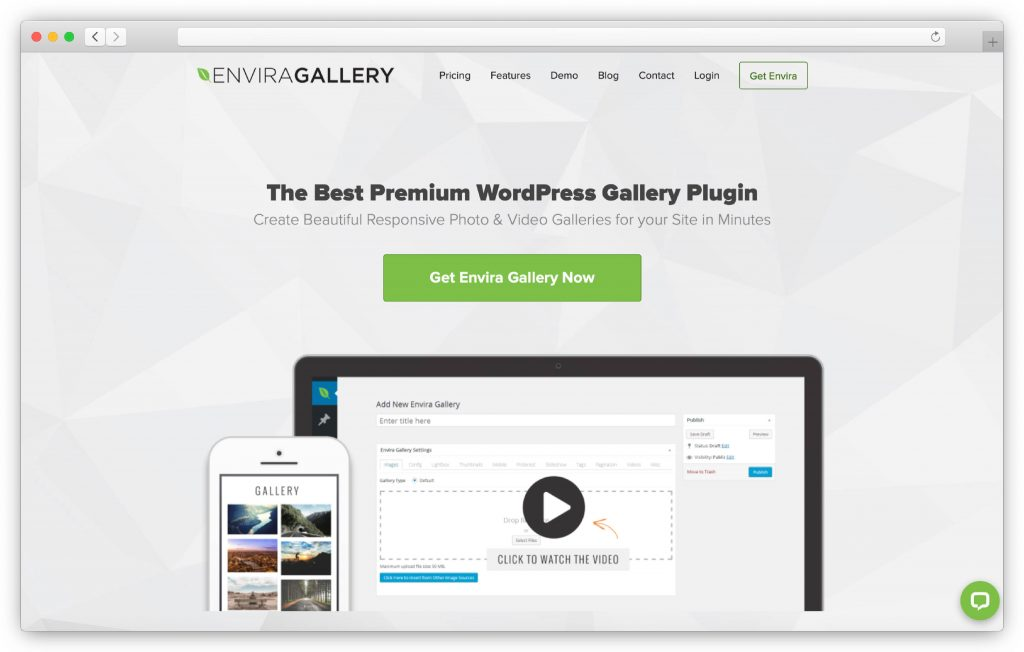 Envira interface - WP gallery plugin