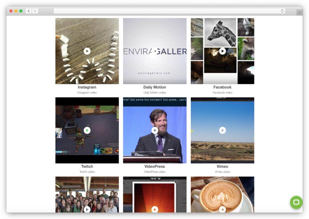 Envira video gallery