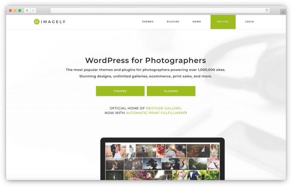 NextGEN interface - WP gallery plugin