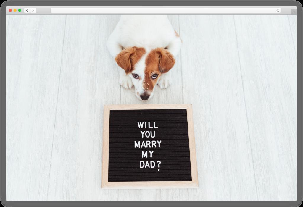 Engagement photoshoot - dog proposing