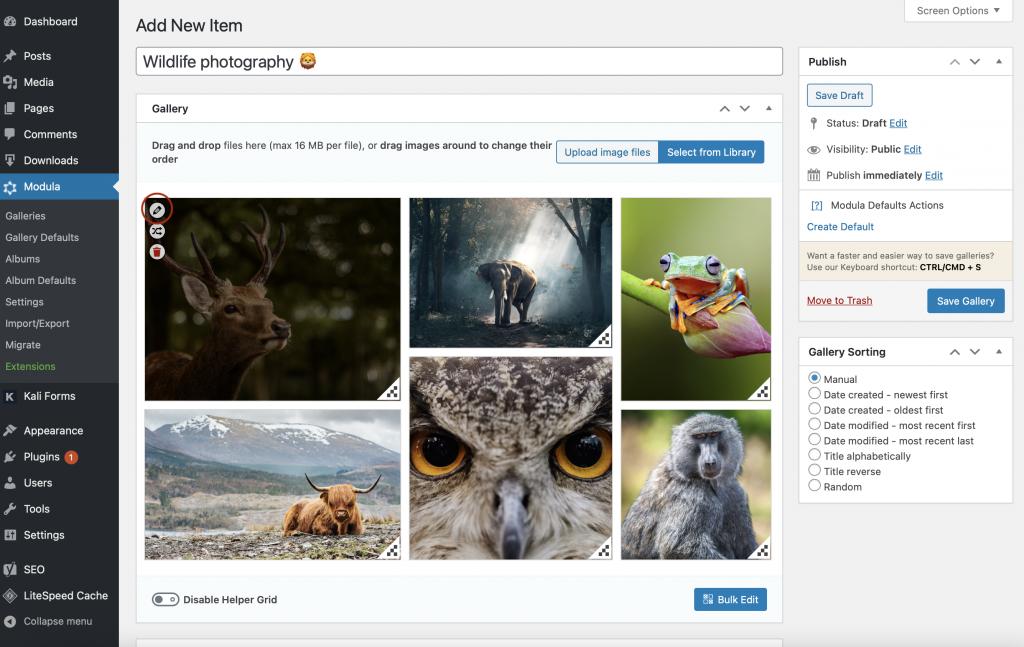 WordPress multimedia gallery